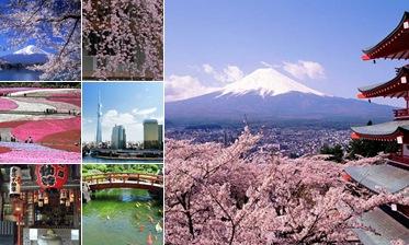Exibir Japan