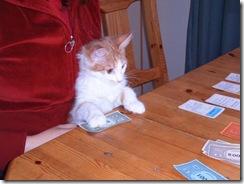 cat_bank
