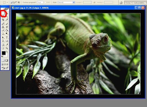 [TUTO] Faire un cadre dégradé avec Photoshop Tuto6
