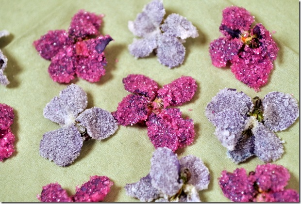 DIY Sugared Flowers Wedding