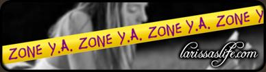 YA ZONE slide framed