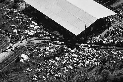 Jonestown 1978. Photo by David Hume Kennerly.
