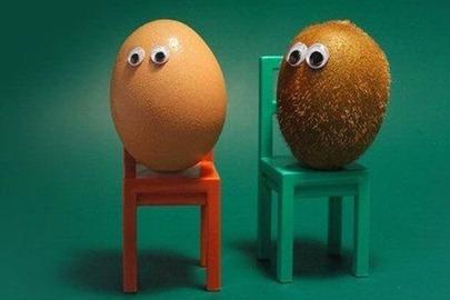 an egg and kiwi