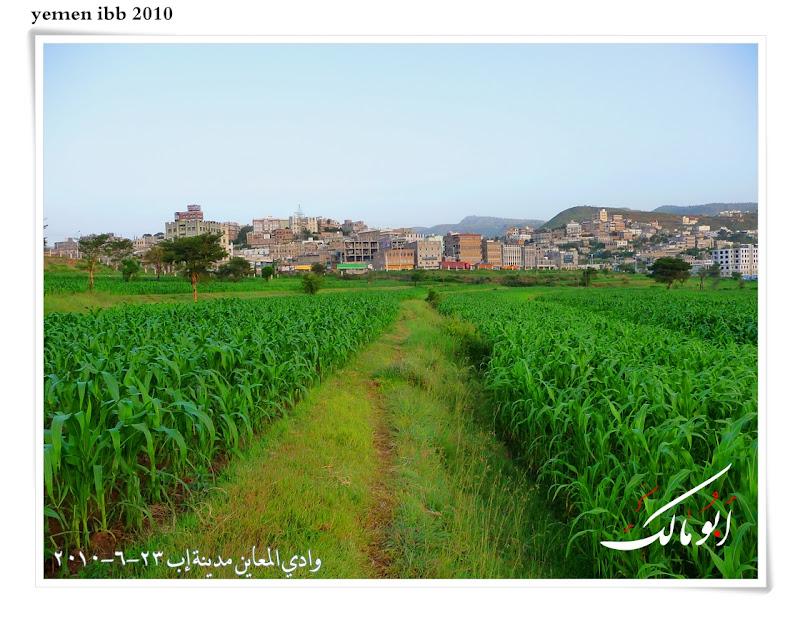 عاصمة السياحة اليمنية إب الخضرا %D8%A7%D9%85%D8%B7%D8%A7%D8%B114o