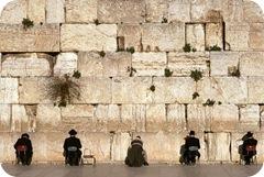 judeus  muro das  lamentações