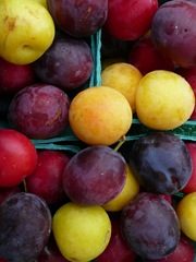 colourful plums