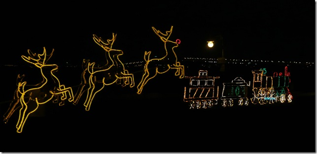xmas lights 021