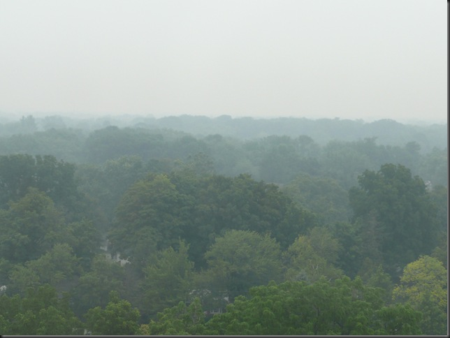fog on burnhamthorpe