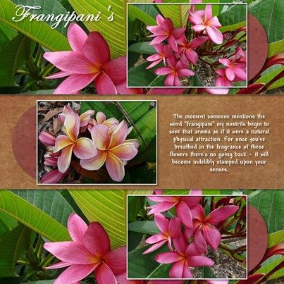 Frangipani's - Page 063