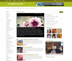 SchemerPlus Theme