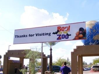 Zoo 21