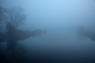 Nebel im Teufelsmoor