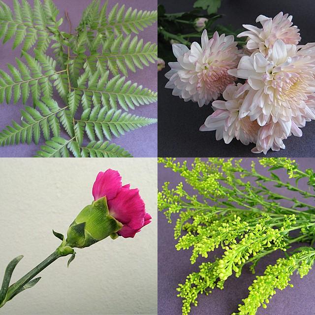 Floral material