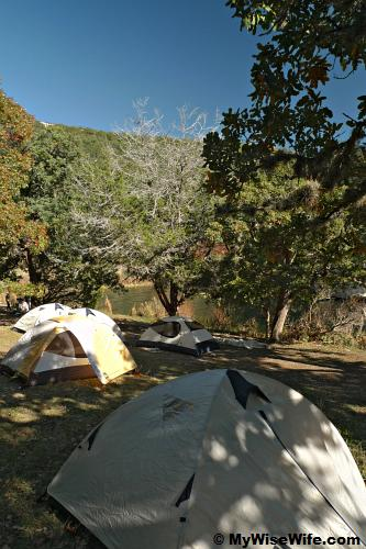 Tents set up at Primitive Camping Site C