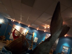 Whale at Basque Museum