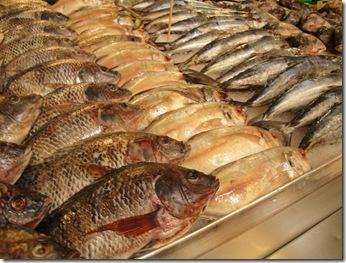 3.  Fish