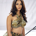 actress anushka spicy b-grate pictures