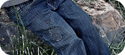 Thumbnail image for Jeans With Personality ~ Denim Guitar Applique