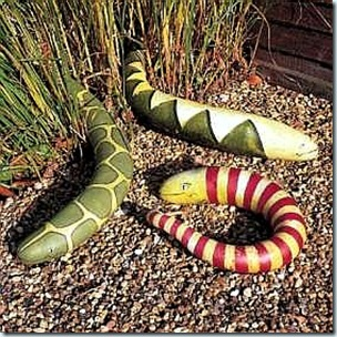 snake gourds