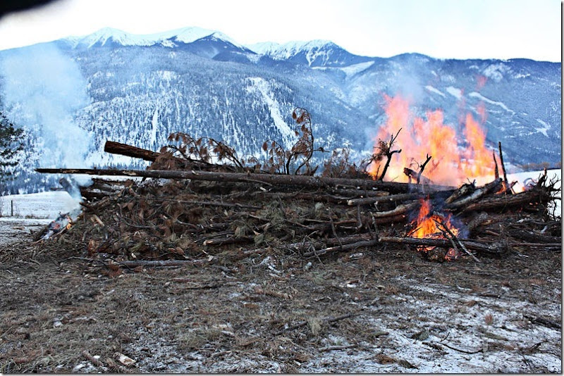 Bonfire-034