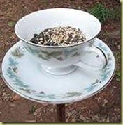 teacup birdfeeder ehow
