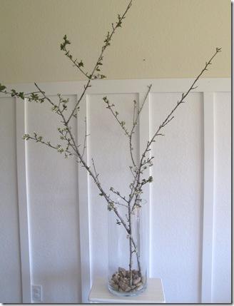 vase blossoms3