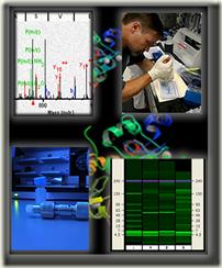 proteomics_graphics7[1]