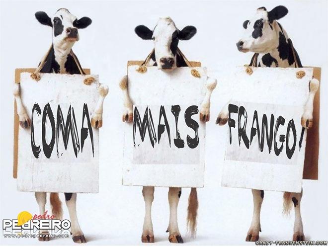 COMA FRANGO_PP