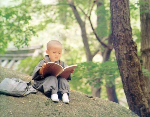 little monk reading