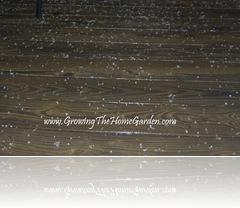Hail on Back Deck 1-2010-1