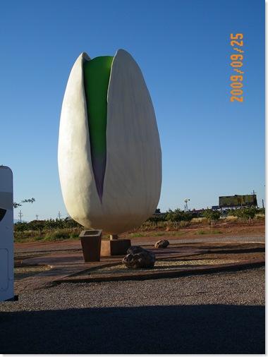 giant pistachio
