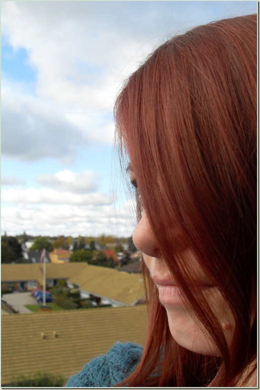 rødbrun