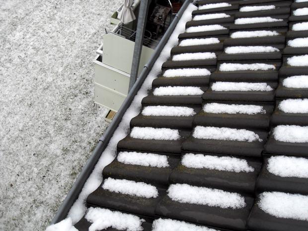 den sidste sne - forhåbentlig