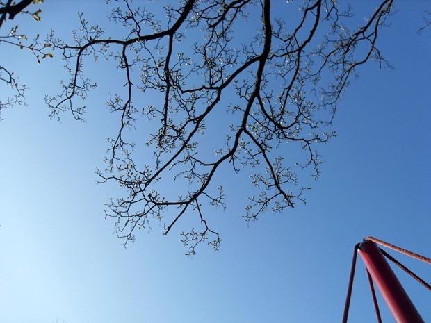 himmelblå