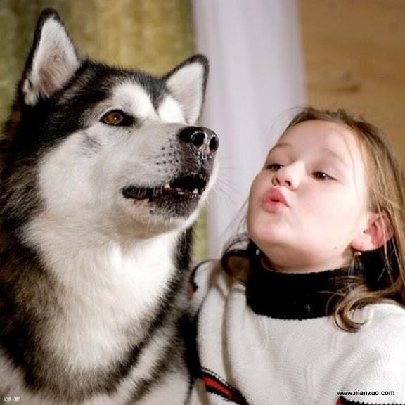 孩子和宠物 好帅