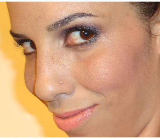 Maquiagem com Blush Wet n Wild