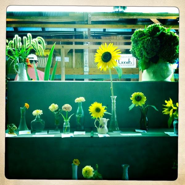 Flowers at Haddam Neck Fair 2010