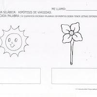 sol-flor.JPG