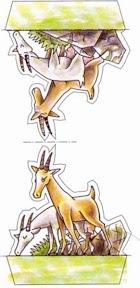 cabras.jpg