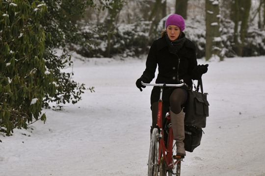 Amsterdam Winter Bicycle