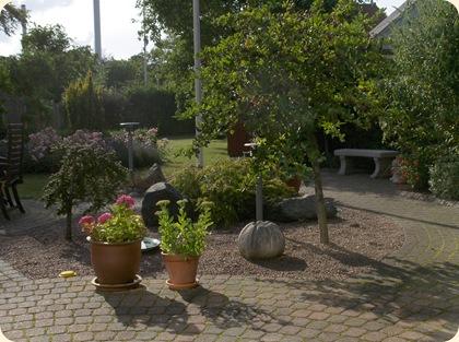 Haven i sol