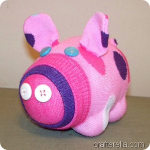 sock pig 1