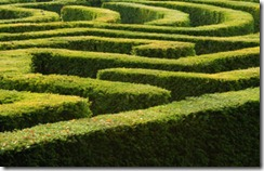 Maze - iStock - small