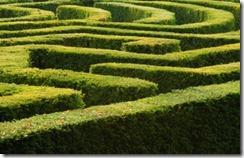Maze - iStock - small