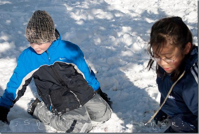 Snow.Friends