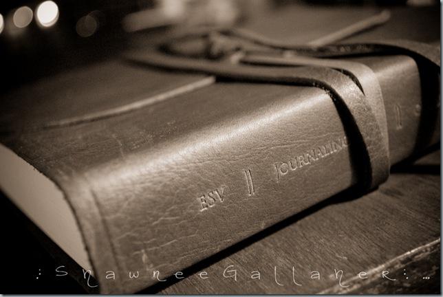 my bible.1