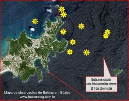 Búzios_Whale_Zone