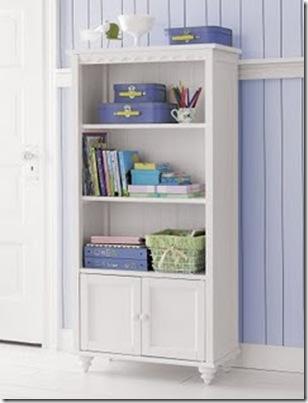 bookcase _maletas
