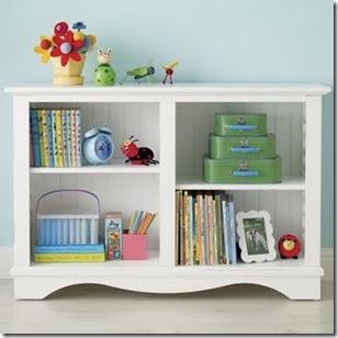 bookcase _maletas2