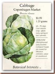 Cabbage_copenhagen_lg
